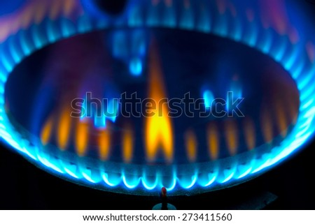 stove for cooking gas burner blue flames - stock photo