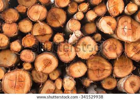 Stow of firewood just before winter - stock photo