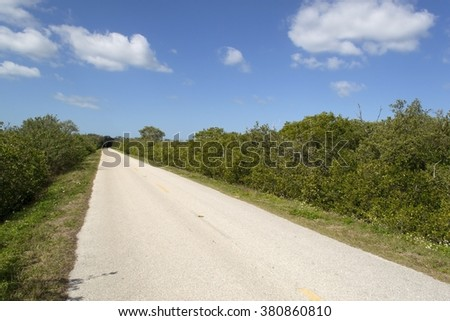 Straight road in Florida Everglades - stock photo
