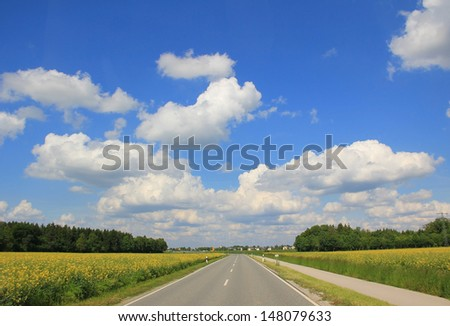 straight roadway through farmland