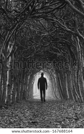 Stranger walking through a dark tunnel of trees. - stock photo