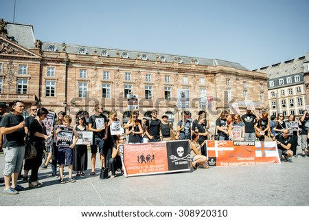 STRASBOURG, FRANCE - AUG 22, 2015: Marine conservation non-profit organization Sea Shepherd protesting against the slaughter of pilot whales and arrest of 7 crew members - people protesting - stock photo