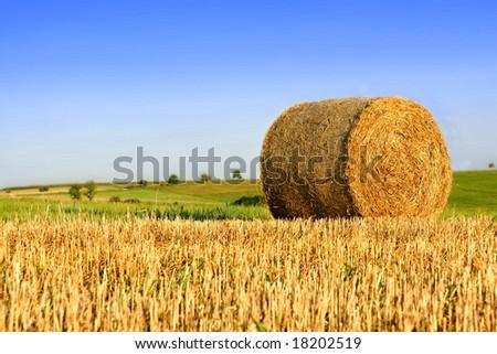 Straw bale on field under blue sky - stock photo