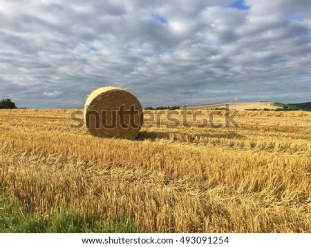 STRAW BALE ON GOLDEN FIELD IN SUMMER