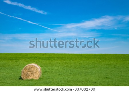 Straw bale on the dike