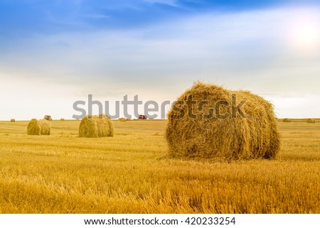 Straw bale on the field after harvest on a sunny day. Focus foreground - stock photo