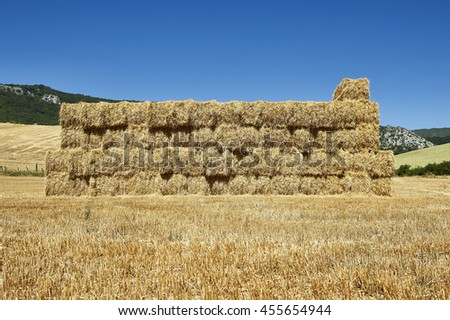 Straw bales in the field - stock photo