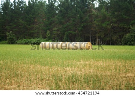 Straw bales in the fields of the town of Hostalric. Girona, Catalonia  - stock photo