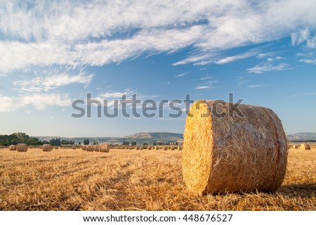 Straw bales in the plain of Catania, Sicily