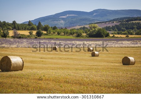Straw bales on a field in Provence, France