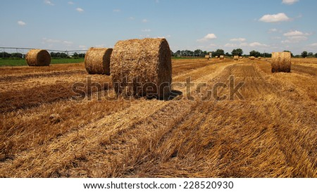 Straw Bales on a Stubble Field.Field of freshly baled round hay bales - stock photo