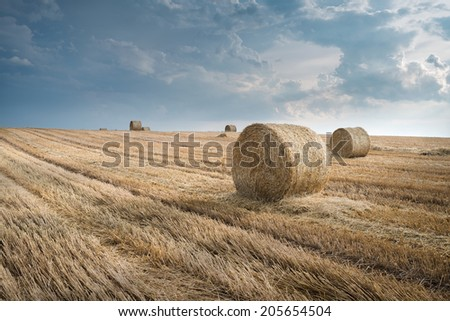 Straw bales on farmland in the sunset - stock photo