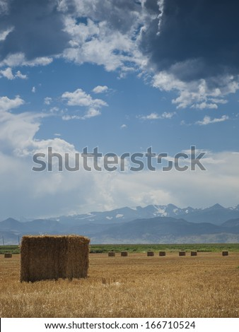 Straw bales on farmland with blue cloudy sky. View of the Longs Peak, Colorado on the background. - stock photo