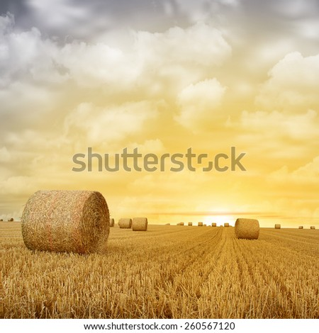 Straw Bales on Farmland with Sunset, Sunrise. - A manipulated photograph with some illustration elements. - stock photo