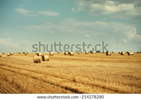 Straw bales on the yellow field - stock photo