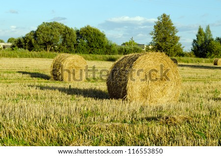 Straw bales shadows in harvested agricultural field in autumn - stock photo