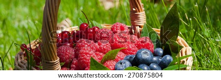 Straw basket with fresh summer fruit - stock photo