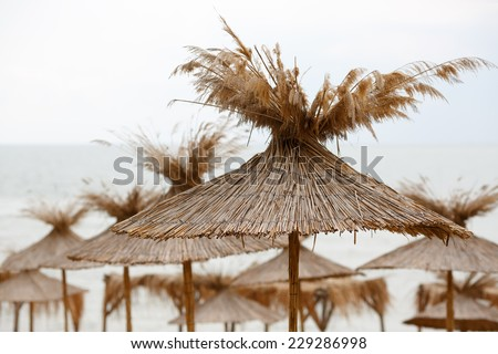 Straw beach umbrellas on a background of the cloudless sky - stock photo