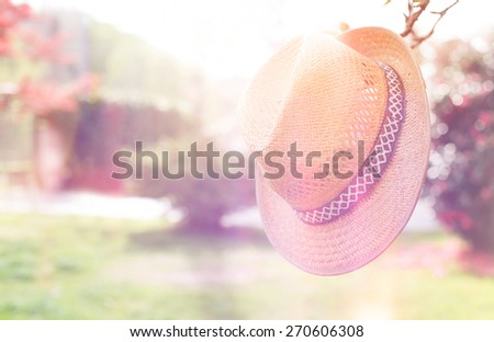 straw hat and flowers with filter colors . - stock photo