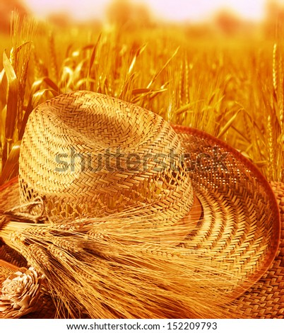 Straw hat on wheat field, beautiful golden rye meadow, harvest season. autumn time, agricultural landscape, food industry concept