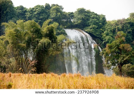 Straw in rice field front of Ban Gioc Waterfall on the Quy Xuan River is located in Cao Bang Province,nears the Sino-Vietnamese border. The waterfall falls thirty meters,Northern of Vietnam. - stock photo