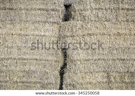 Straw in rural farmhouse in the countryside, agriculture - stock photo