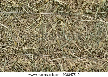 Straw is wall.  - stock photo