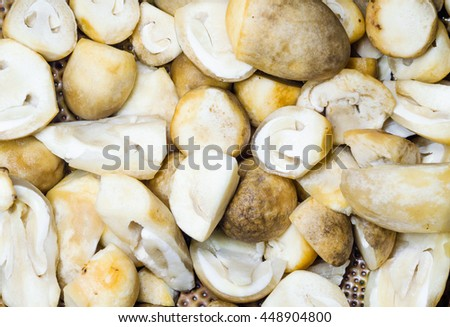straw mushroom background
