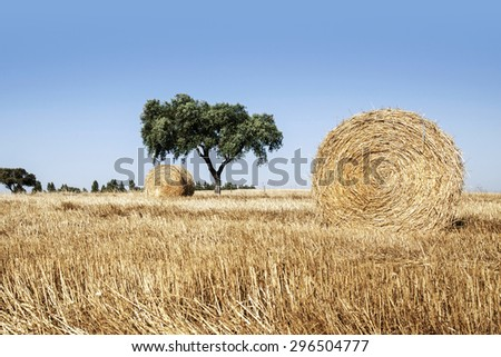 Straw roll in Alentejo, Portugal