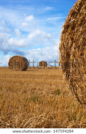Straw rolls in the field.