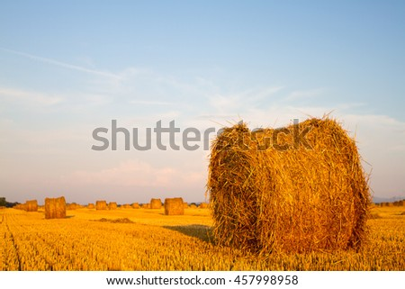 straw rolls on field