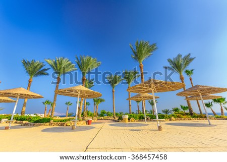 Straw umbrellas and sunbeds on the wonderful tropical beach.  - stock photo