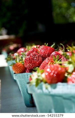 Strawberries 2 - stock photo