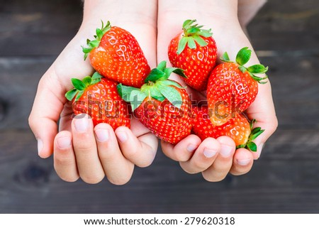 Strawberries close up in hands of kid. - stock photo