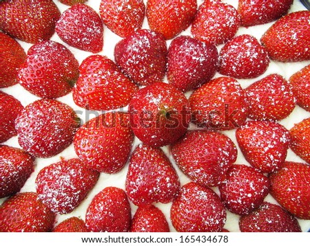 strawberries dusted with ice sugar  on top of  cheese cake  - stock photo