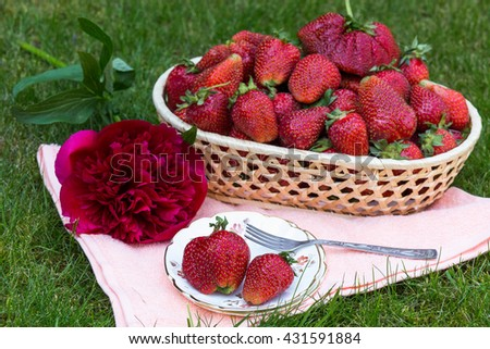 Strawberries in a basket and in a plate with a fork, decorated with red peony. Outside summer decor. Picnic idea.  - stock photo