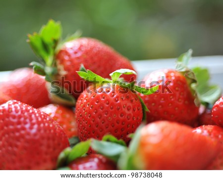 strawberries in a basket in the garden. - stock photo