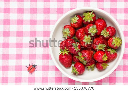 strawberries in a bowl and ladybird