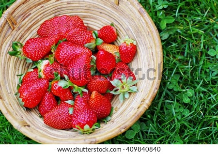 Strawberries in wooden basket. Fresh ripe organic strawberry in wooden basket. Fresh strawberry in wood basket on green grass background. - stock photo