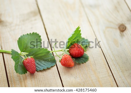 strawberries on a wooden table in the garden - stock photo