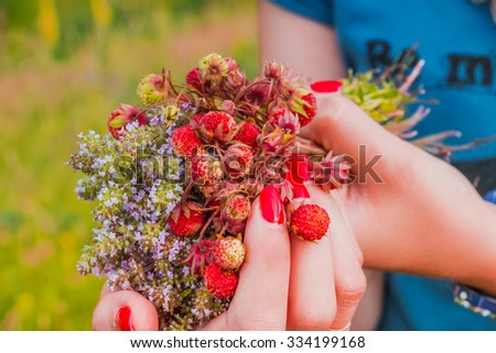 Strawberries on hand - stock photo