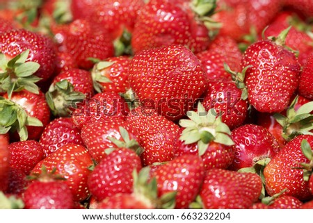 Strawberries on the market, Colorful photo of strawberries with de focused background, Selective focus with shallow depth of field