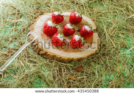 Strawberries on the stump, sprinkled with sugar. Hay and fork side by side. - stock photo