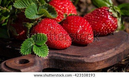 Strawberries with leaves on a Board in the garden on a Sunny day