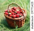Strawberry in a basket on a grass. - stock photo