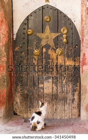 Stray cat waiting Arabic oriental styled door in Marrakech, Morocco - stock photo
