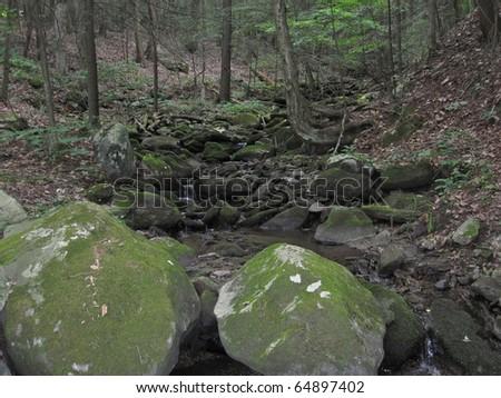 Stream along the Appalachian Trail - stock photo