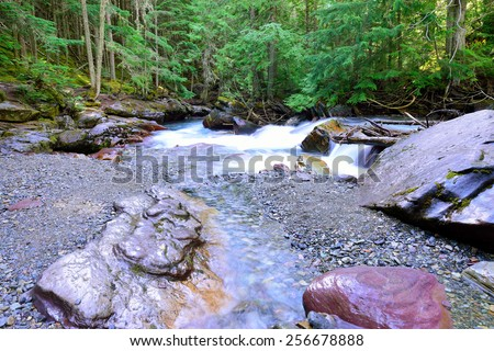 stream along the Avalanche lake trail in Glacier National Park - stock photo