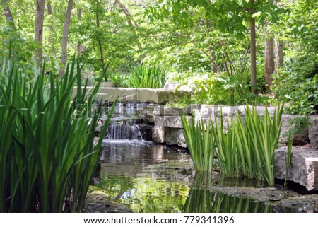 Stream At Lauritzen Gardens In Omaha, NE