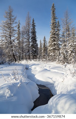 stream flowing in winter forest among the snowdrifts
